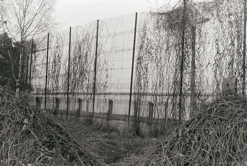 A section of the hinterland fence by Cecilienhof Palace raised to a height of six meters was planted with vines in an attempt to obstruct the view of the border facilities (1989) - Photo: Grenzanlage in Nähe der Meierei/SPSG/Peter Rohn